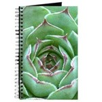 Succulent Journal