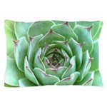 Succulent Pillow Case