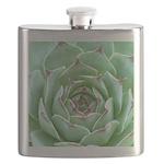 Succulent Flask