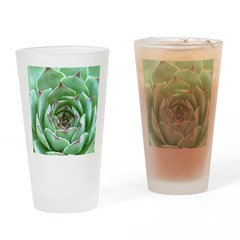 Succulent Drinking Glass