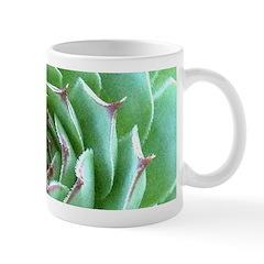 Succulent Mugs