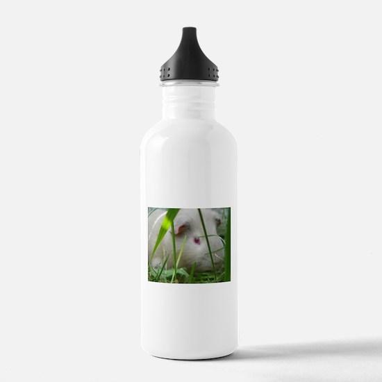 cavy2 Water Bottle