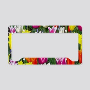 Multicolor Tulips License Plate Holder