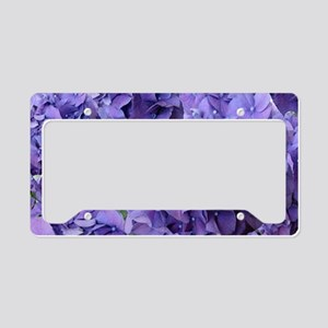 Purple Hydrangea Flowers License Plate Holder