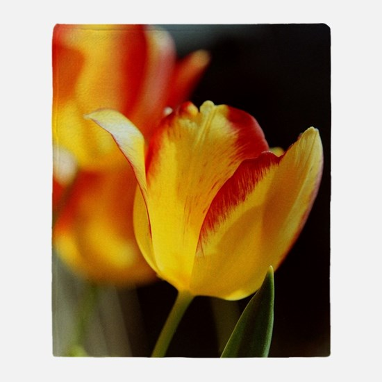 Red Yellow Tulips 667 Throw Blanket