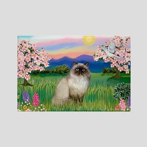 Blossoms & Himalayan cat Rectangle Magnet