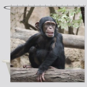 Young Chimp 02 Shower Curtain