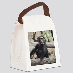 Young Chimp 02 Canvas Lunch Bag