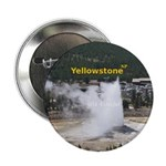 "Yellowstone 2.25"" Button"