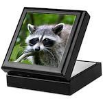 Raccoon Keepsake Box