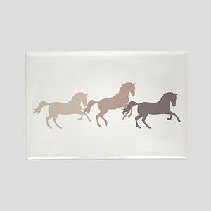 Wild Horses Running Magnets