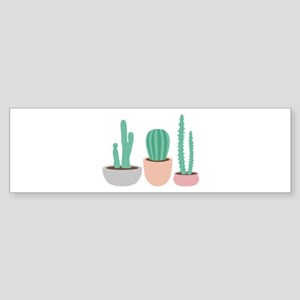 Potted Cactus Desert Plants Bumper Sticker