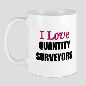 I Love QUANTITY SURVEYORS Mug