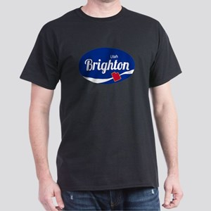Brighton Ski Resort Utah oval T-Shirt