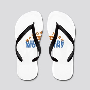 Guadalupe Mountains - Texas Flip Flops