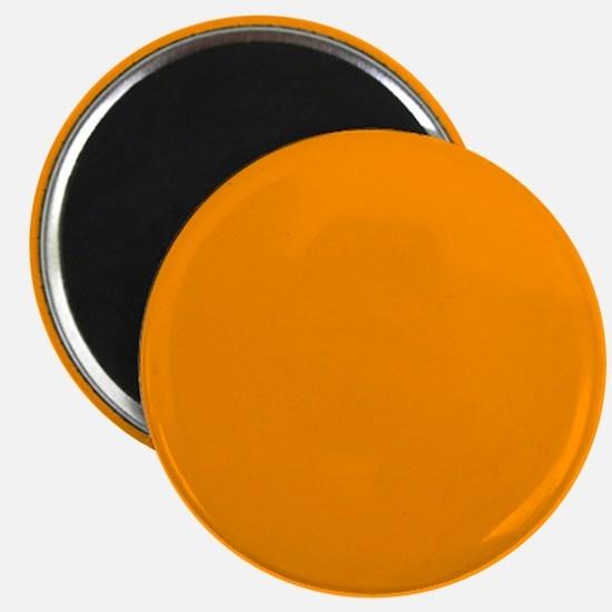 Solid Princeton Orange Magnets