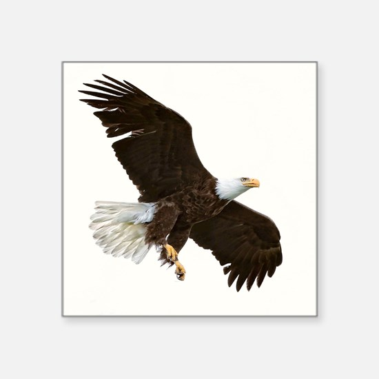Amazing Bald Eagle Sticker
