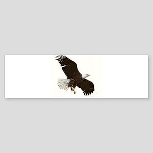 Amazing Bald Eagle Bumper Sticker