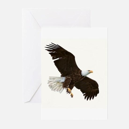 Amazing Bald Eagle Greeting Cards
