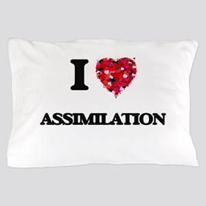 I Love Assimilation Pillow Case