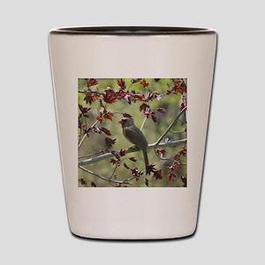 Cardinal Shot Glass