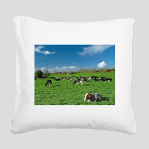 Cows grazing Square Canvas Pillow