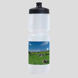 Cows grazing Sports Bottle