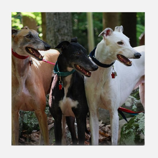 Cute Black white greyhound Tile Coaster