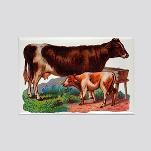 Cow And Calf Magnets