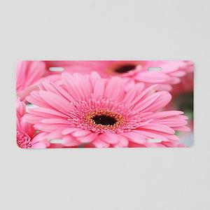 Pink Gerbera Daisies Aluminum License Plate