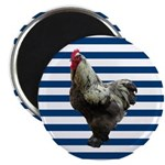 Rooster on Blue Stripes Magnets