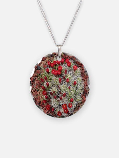Red cactus in flower, Utah,  Necklace