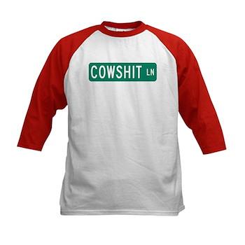Cowshit Lane, Pennsylvania Kids Baseball Jersey