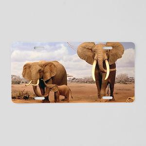 Family Of Elephants Aluminum License Plate