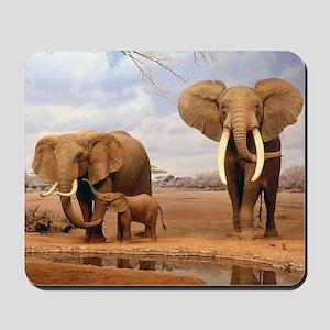 Family Of Elephants Mousepad