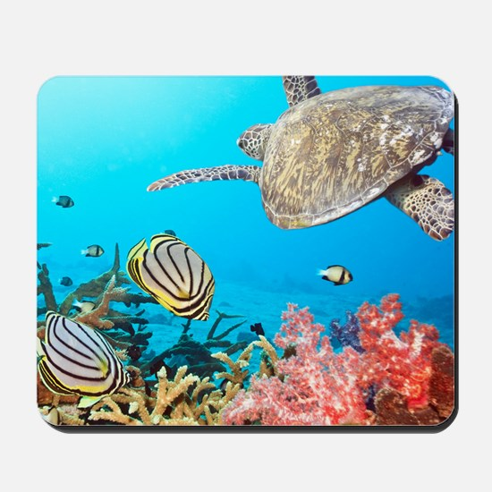 Turtle and Fishes Under Water Mousepad