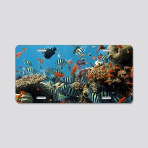 Fishes and Underwater Plants Aluminum License Plat