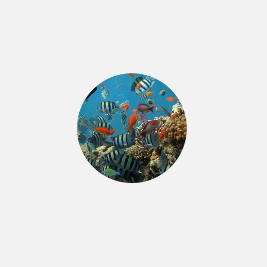 Fishes and Underwater Plants Mini Button