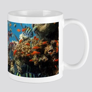 Fishes and Underwater Plants Mugs