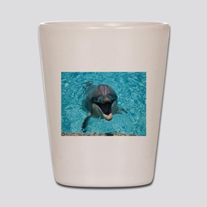 Smiling Dolphin Shot Glass
