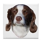 Brown & White Dog Tile Coaster