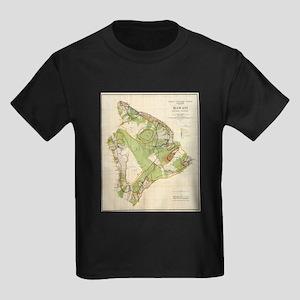 Vintage Map of Hawaii Island (1906) T-Shirt