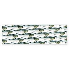 Dunkleosteus pattern Bumper Sticker