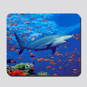 Colorful Shark Mousepad
