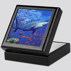 Colorful Shark Keepsake Box