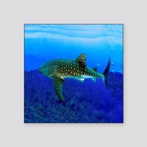 "Whale Shark Square Sticker 3"" x 3"""