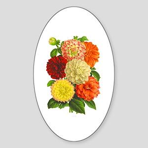 Summer Dahlias Sticker (Oval)