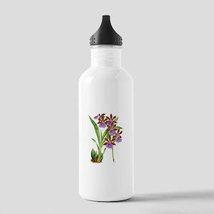 Zygopetalum-clayi Purp Stainless Water Bottle 1.0L