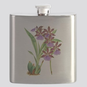 Zygopetalum-clayi Purple Orchid Flask