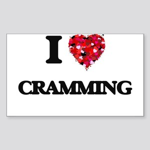 I love Cramming Sticker